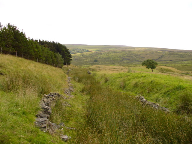 Old Grane Road leading down towards Souter Hill Farm