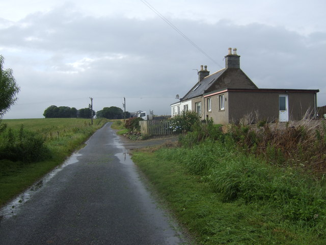 Houses by the lane to Nether Leask