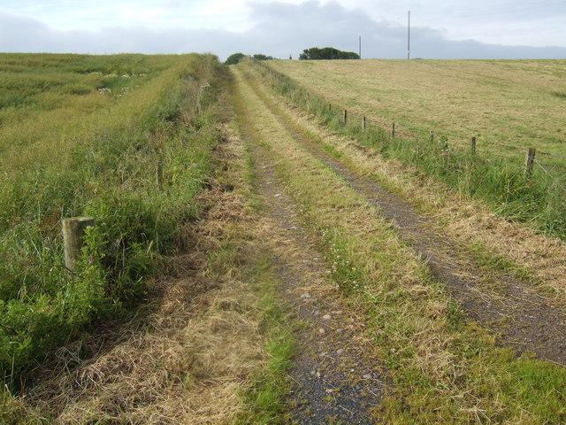 Track to East Brogan
