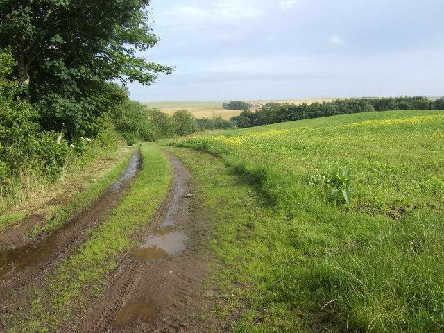 Track near South Artrochie