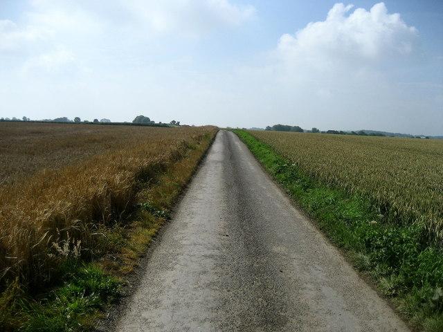 Potter Lane near Swalefields