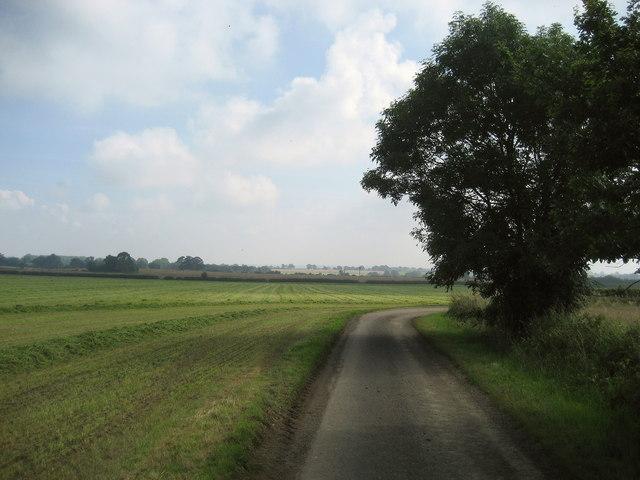 Potter Lane (South)