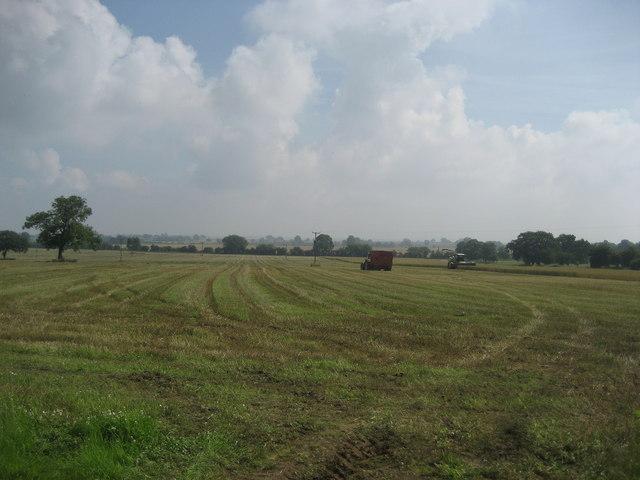 Field near Fairholme