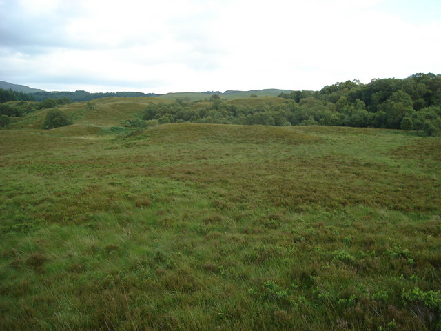 Open hillside and deciduous copse to the southeast of Dubh Loch Mor