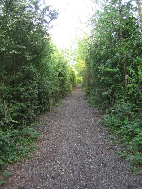 Bridleway near Calvert