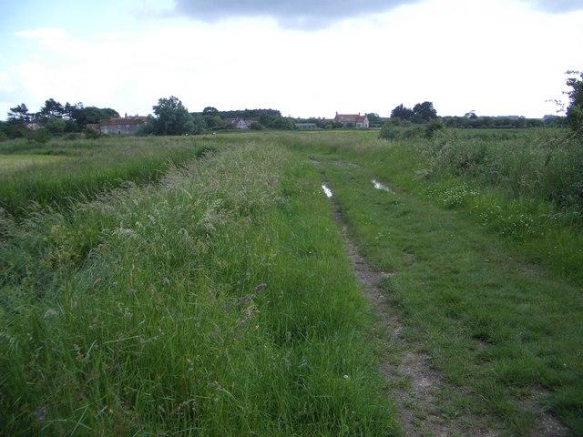 Public Footpath North of Burnham Norton