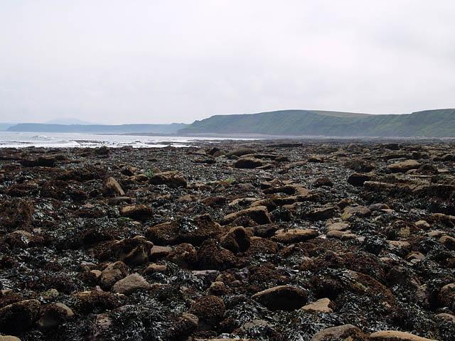 Rocks near Long Nab