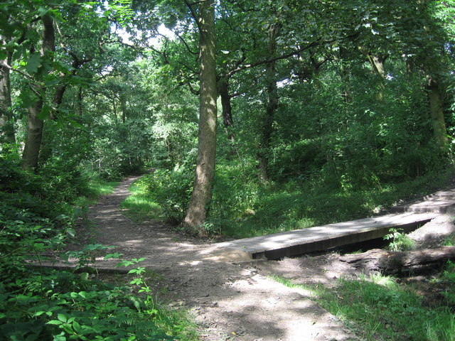 Nature Trail, Clinkham Wood