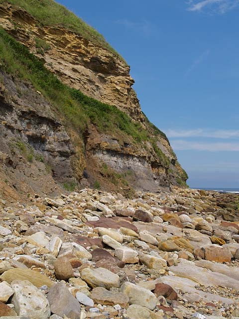 Cliffs to north of Burniston Steps
