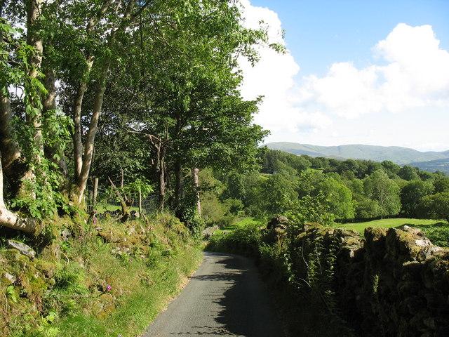 Road below Cors y Garnedd