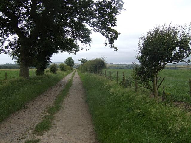 Lane south of Fishwick Mains