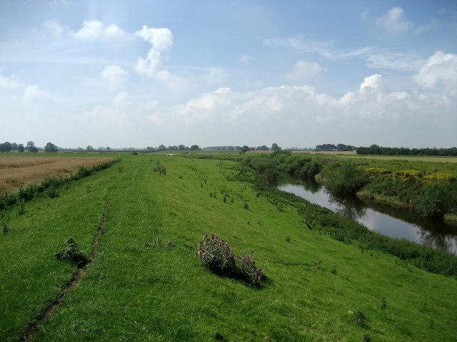 Levee beside River Swale