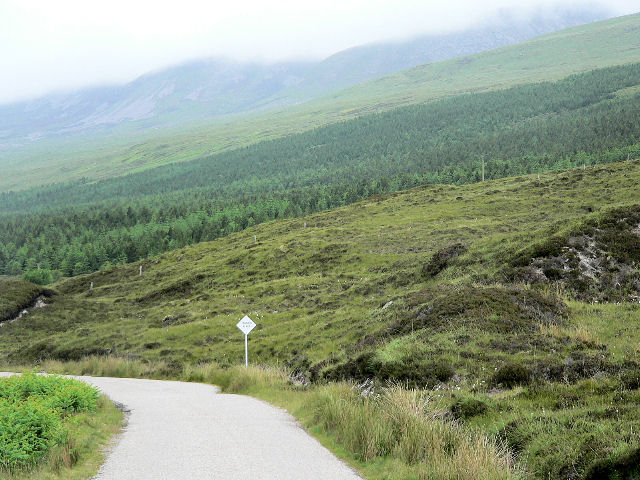 Road across moorland, towards forest