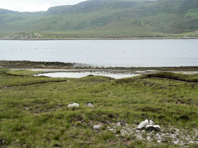 Shoreline of Loch Eriboll