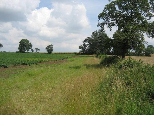 Field off Green Hills Lane