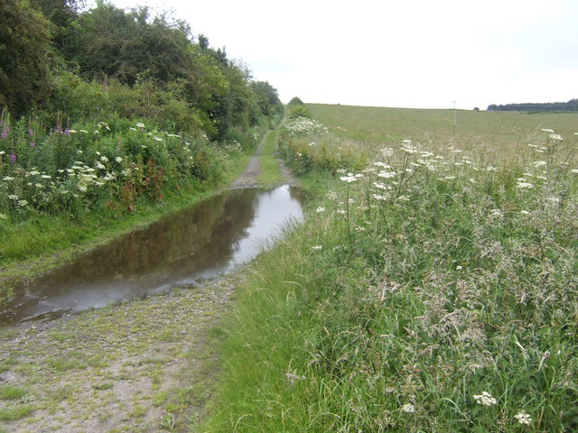Track to Etal Moor