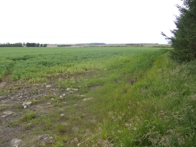 View east of the B6525