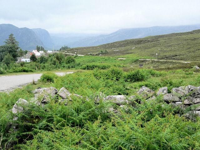 Road through Laid
