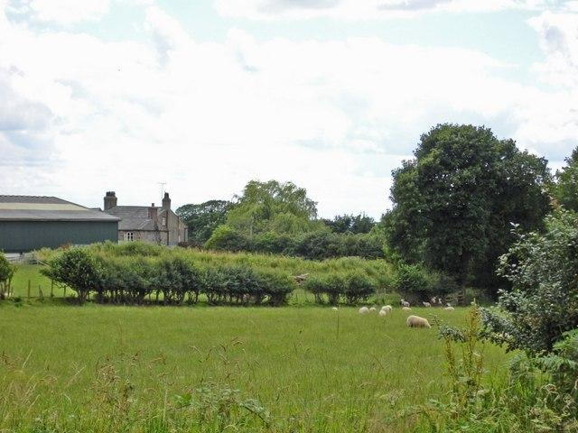 Rangeway Bank Farm, Manley