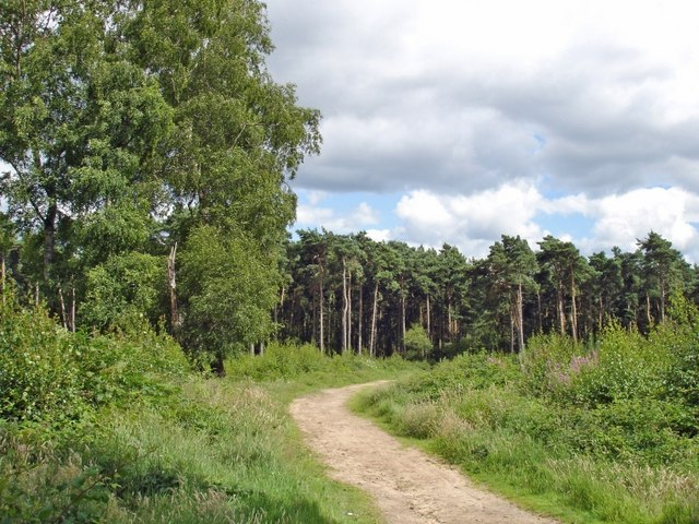 Manley - view along the Sandstone Trail