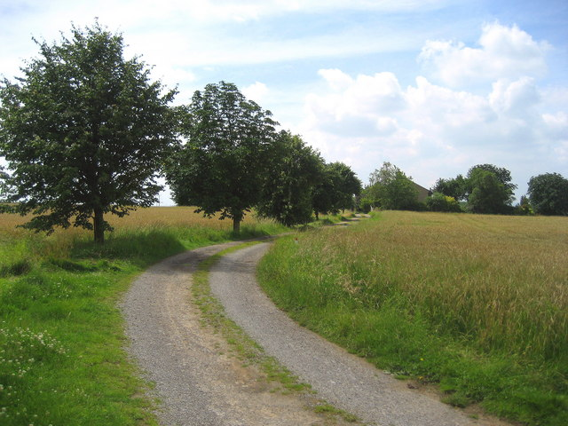 Access Lane to Sedgefield House