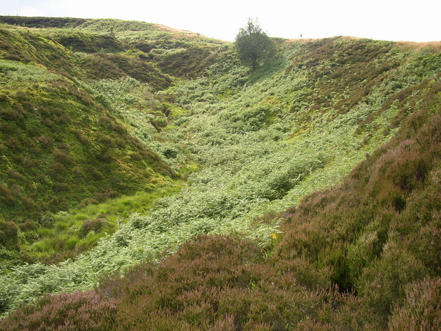 Valley to the south of Brow Grain Hill, Meltham