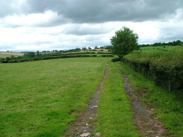 Field near Colby