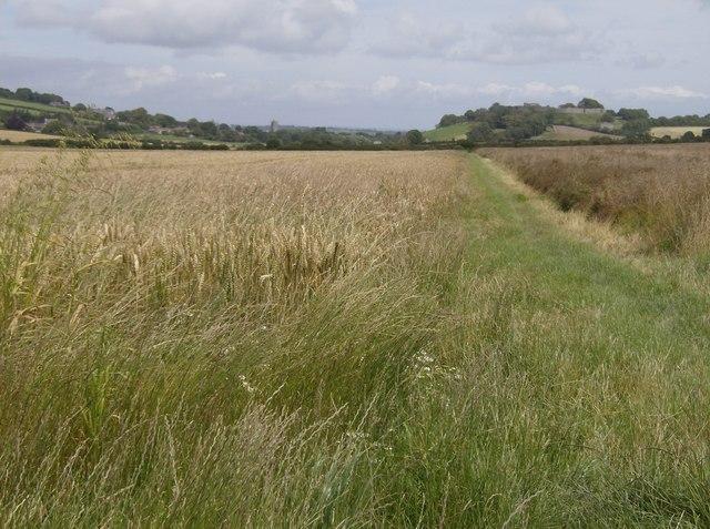 Footpath towards Carisbrooke