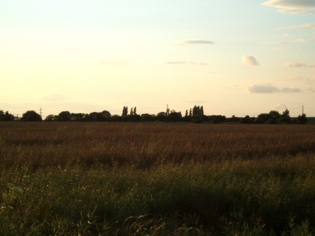Fields towards Keadby Grange