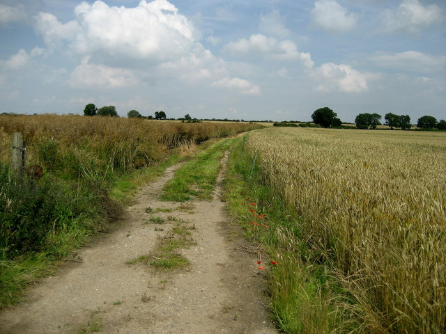Footpath north of Ainderby Steeple