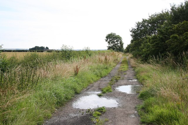 Gibbet Lane bridleway
