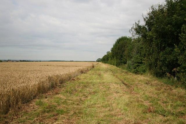 Permissive path