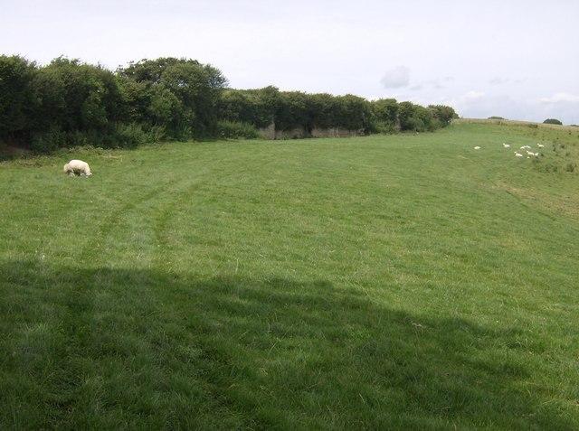 Geology on the Shepherd's Trail