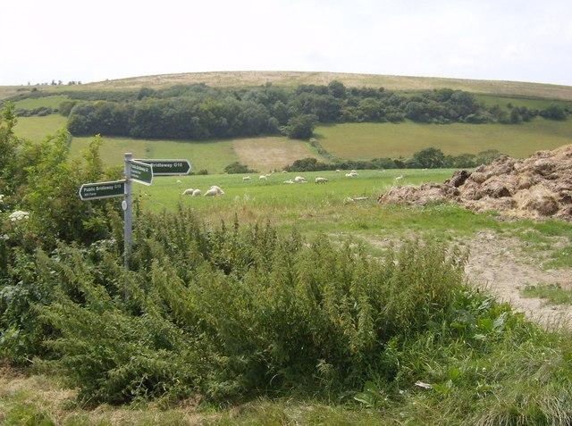 Bridleway junction east of Garstons