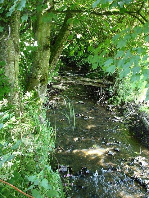 Stream near Llwydrallt