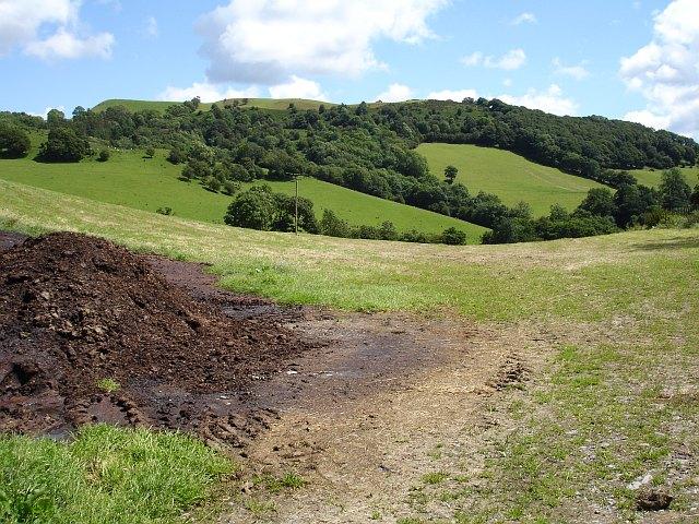 Pasture near Cefn du uchaf