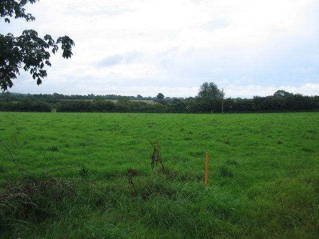 Farmland off Bleet Lane