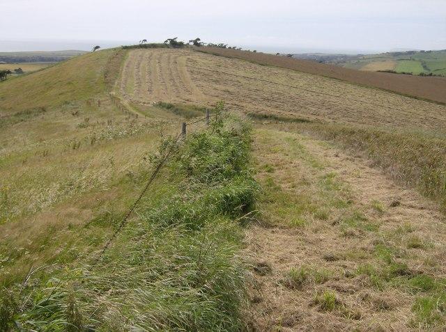 Bridleway towards Shorwell