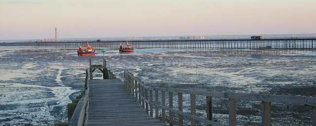 Southend shore