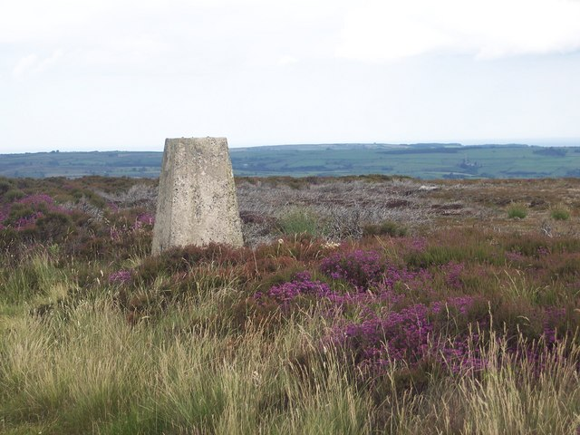 Glaisdale Rigg Trig Point