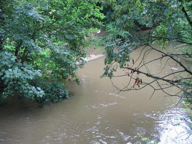 River Stour at Eccliffe