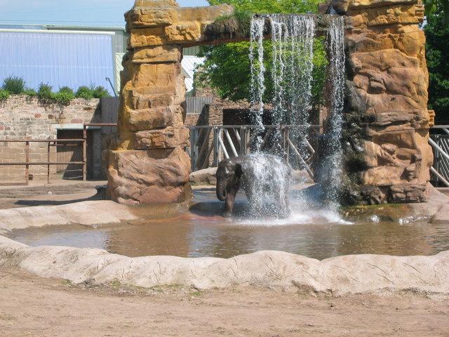 Chester Zoo - Elephant Enclosure