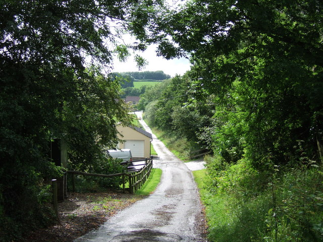Lane to Ashcombe Farm