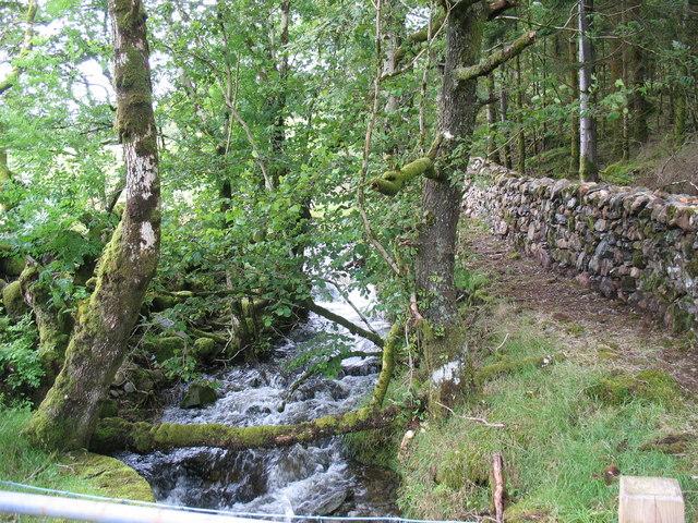 Afon Cwm Blaen-y-glyn