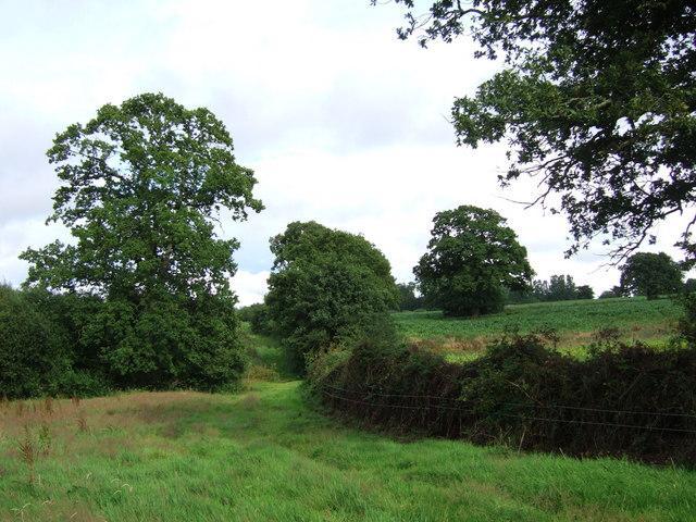 Fields near Oathill