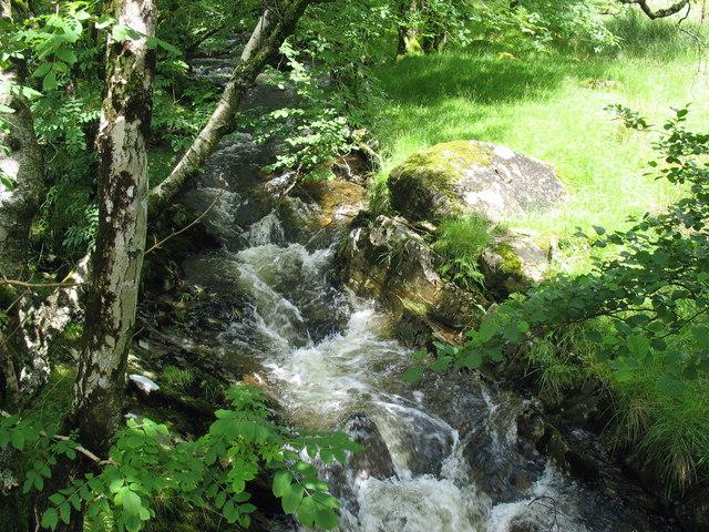 Afon Hendre - a tributary of Afon Wen