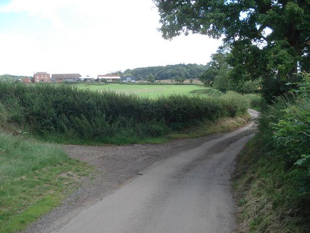 Lane to Webbhouse Farm