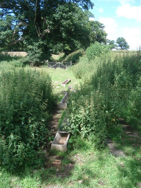 Footpath near Webbhouse Farm