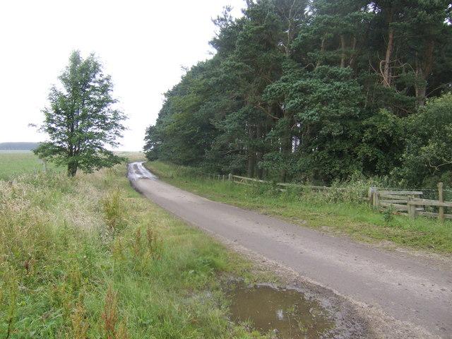 Moor road; North Charlton