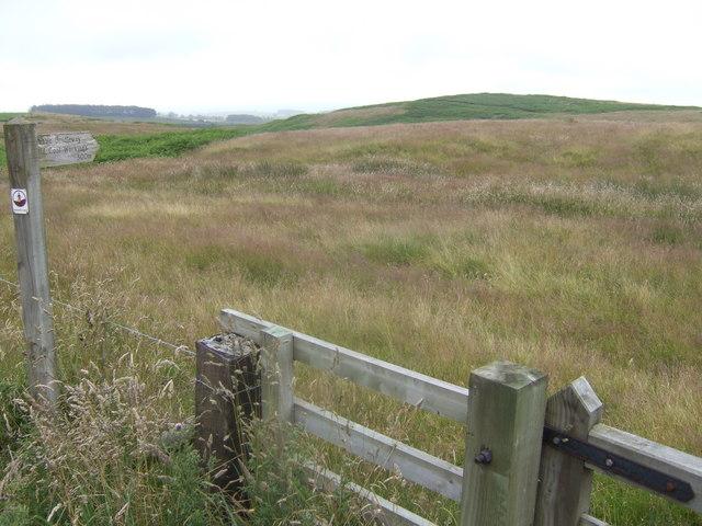 Bridleway sign near Haughterslaw
